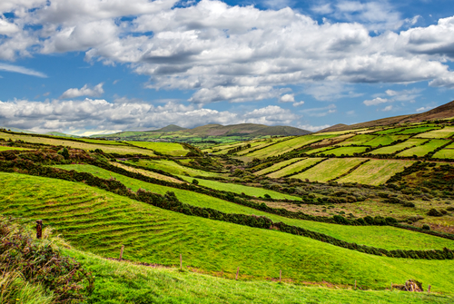 ireland-countryside